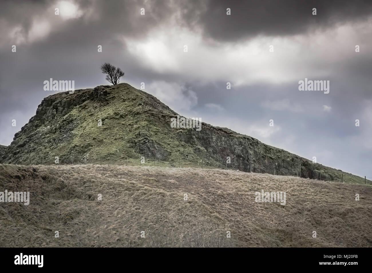 Baum auf der felsigen Hügel und dunkle, dramatische, bewölkter Himmel. Nationalpark Peak District, Derbyshire Uk. Atemberaubende britische Landschaft Landschaft, Feder Stockfoto