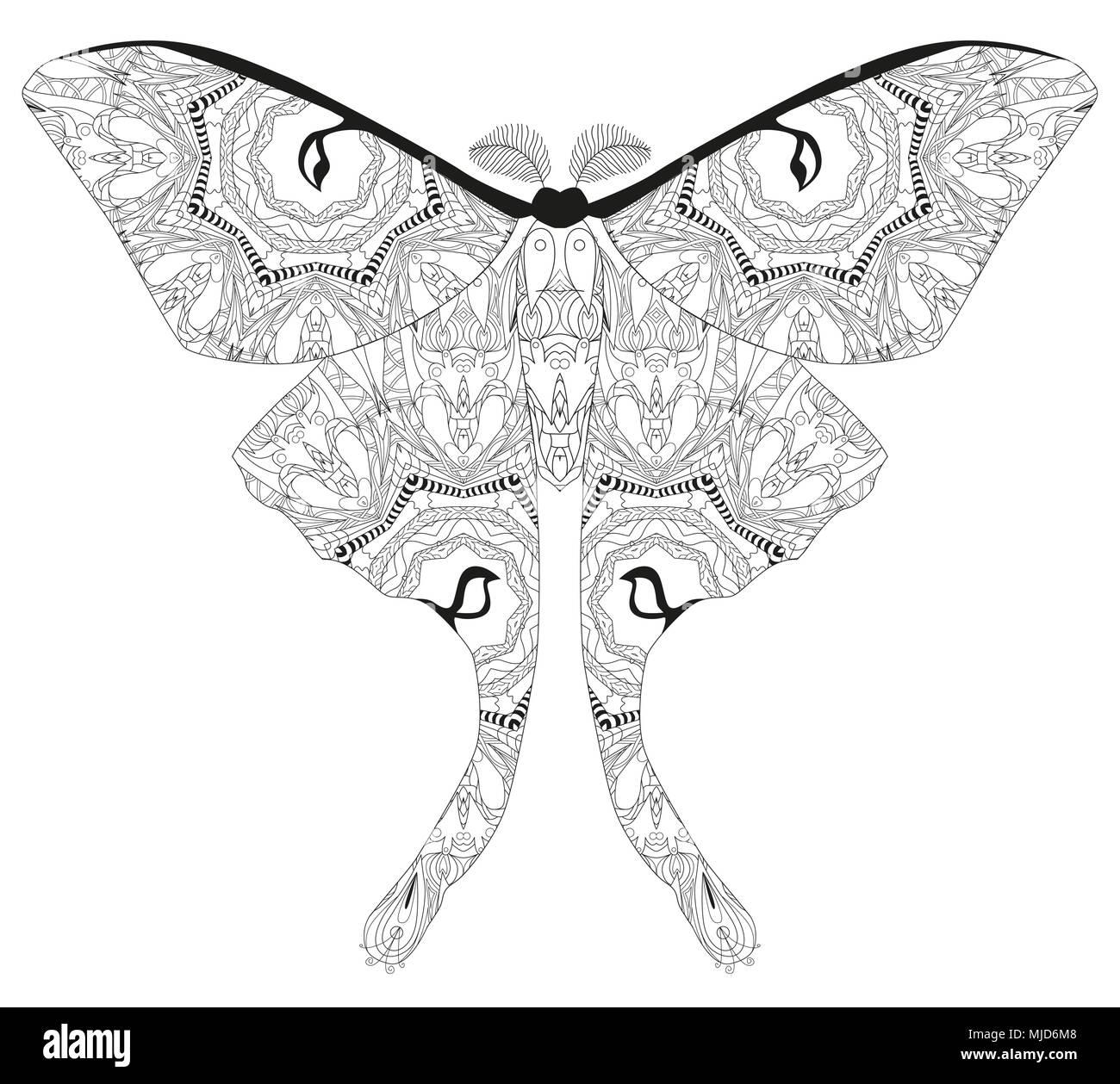 Schmetterling zentangle mit klaren Linien für Malbuch für Anti ...