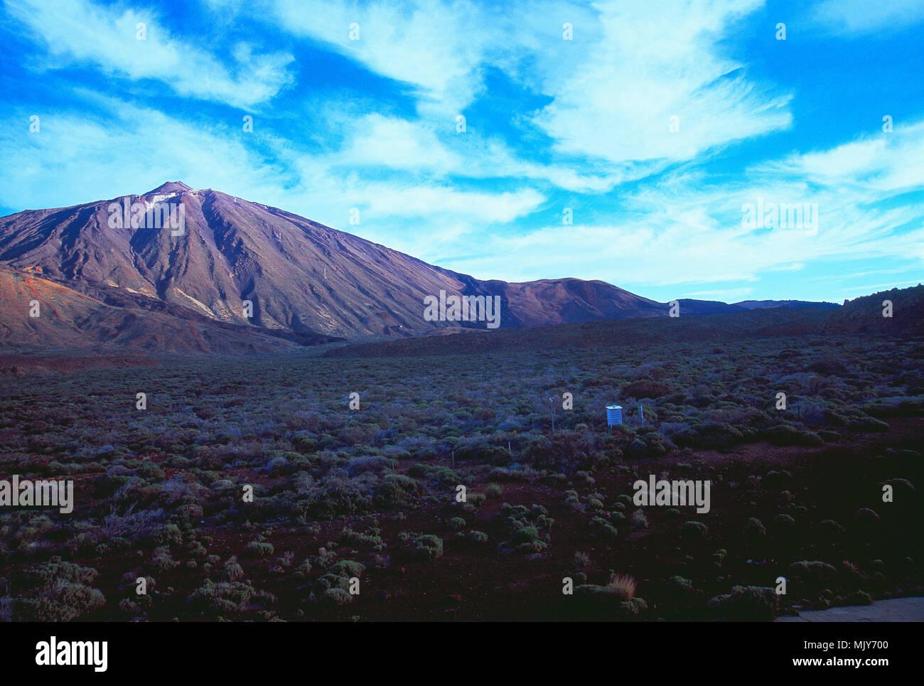 Nationalpark Teide, Teneriffa, Kanarische Inseln, Spanien. Stockfoto