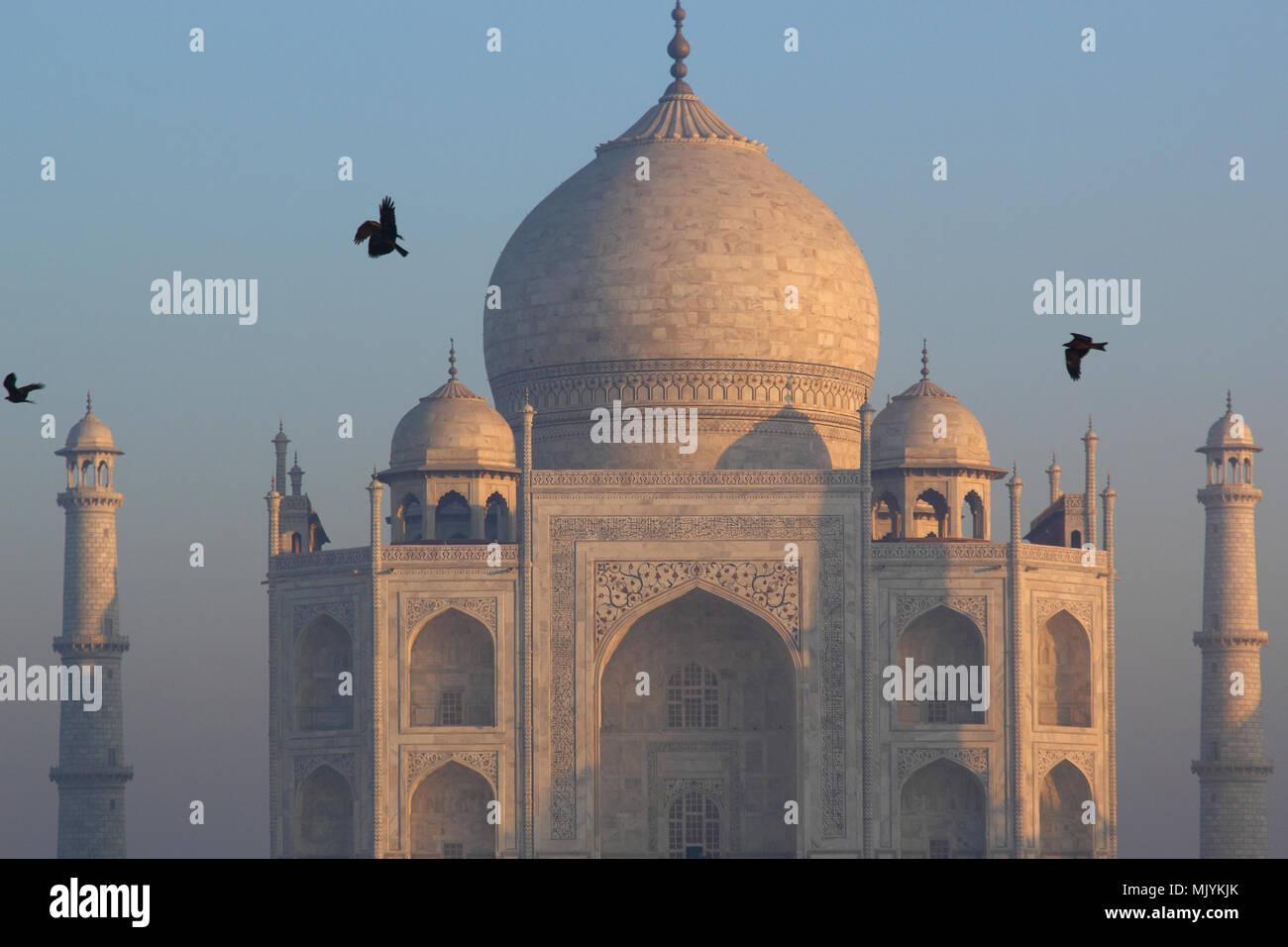 Panoramablick auf das Taj Mahal bei Sonnenaufgang Stockbild