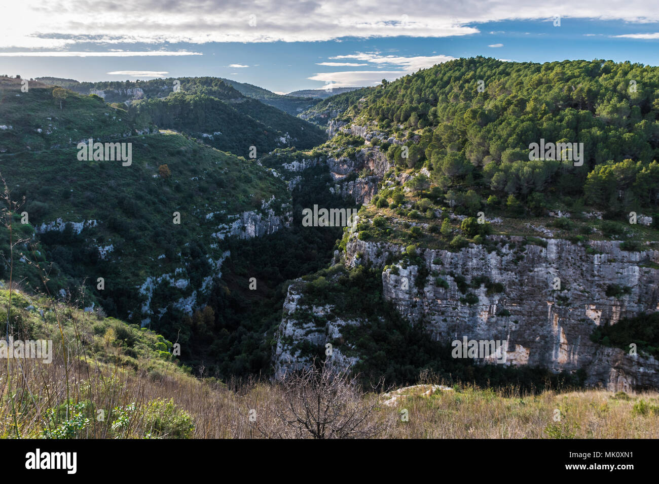 Panoramablick auf die Anapo Tal und die pantalica Plateau in der Nähe von Syrakus, in Sizilien Stockbild