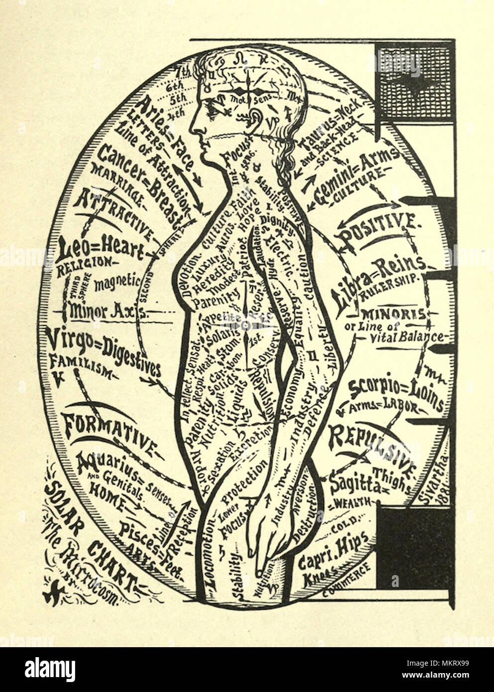 Berühmt Spirituelle Anatomie Des Menschen Fotos - Anatomie Von ...