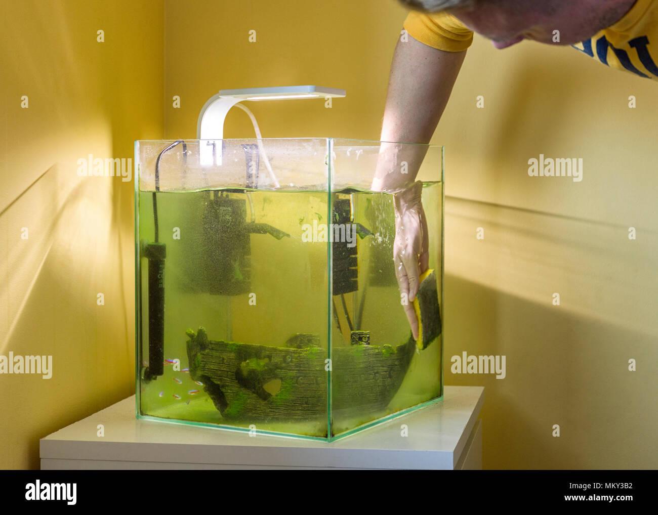 Fußboden Günstig Tanken ~ Fußboden günstig tank nach kaukasisch männlich mann reinigung
