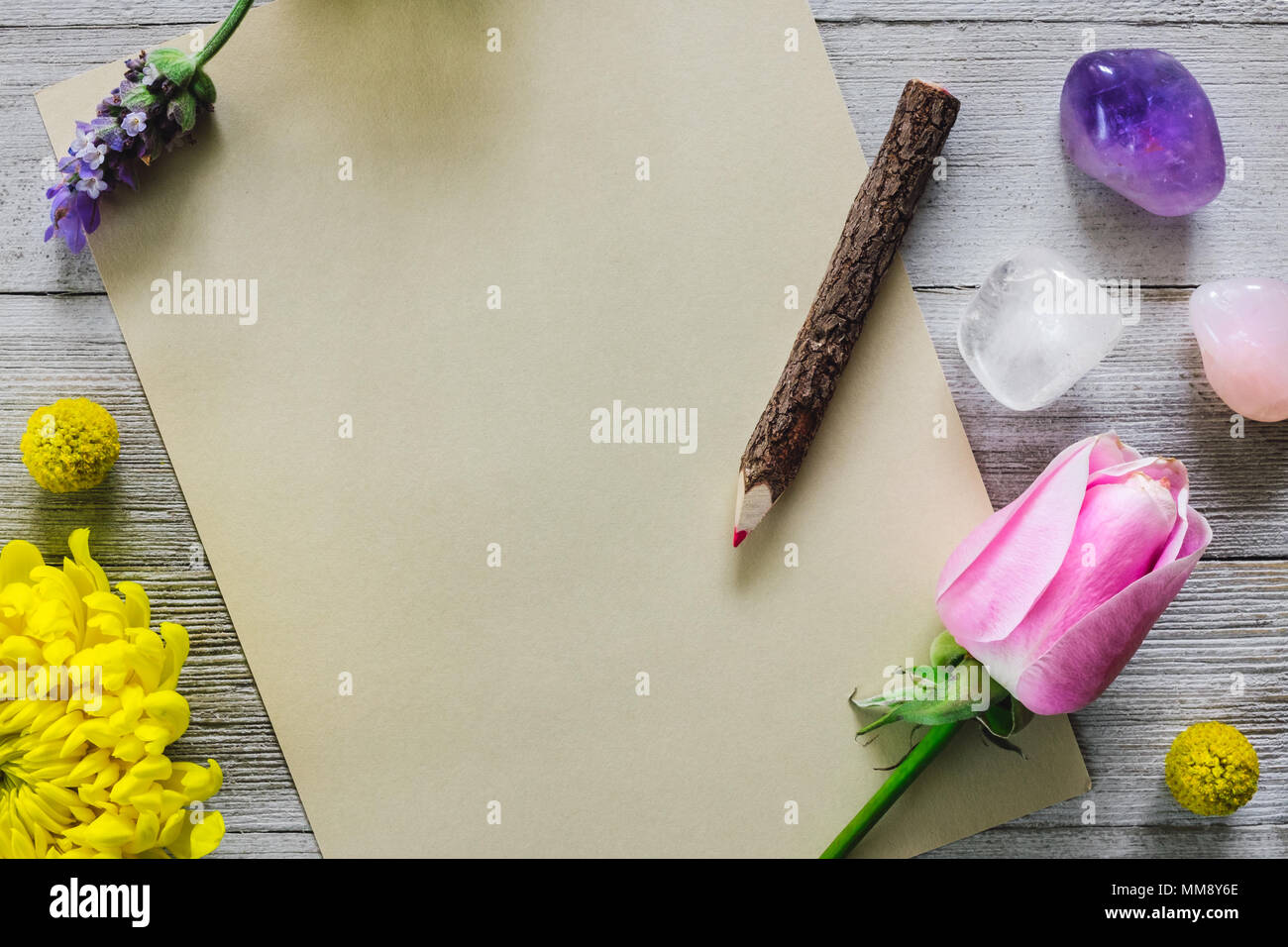 Leeres Papier Mit Bleistift Blumen Lavendel Und Steine