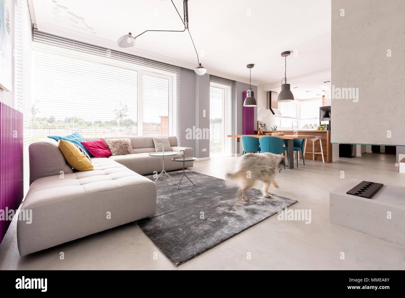 Geraumiges Offen Geschnittenes Modernes Wohnzimmer Interieur Mit