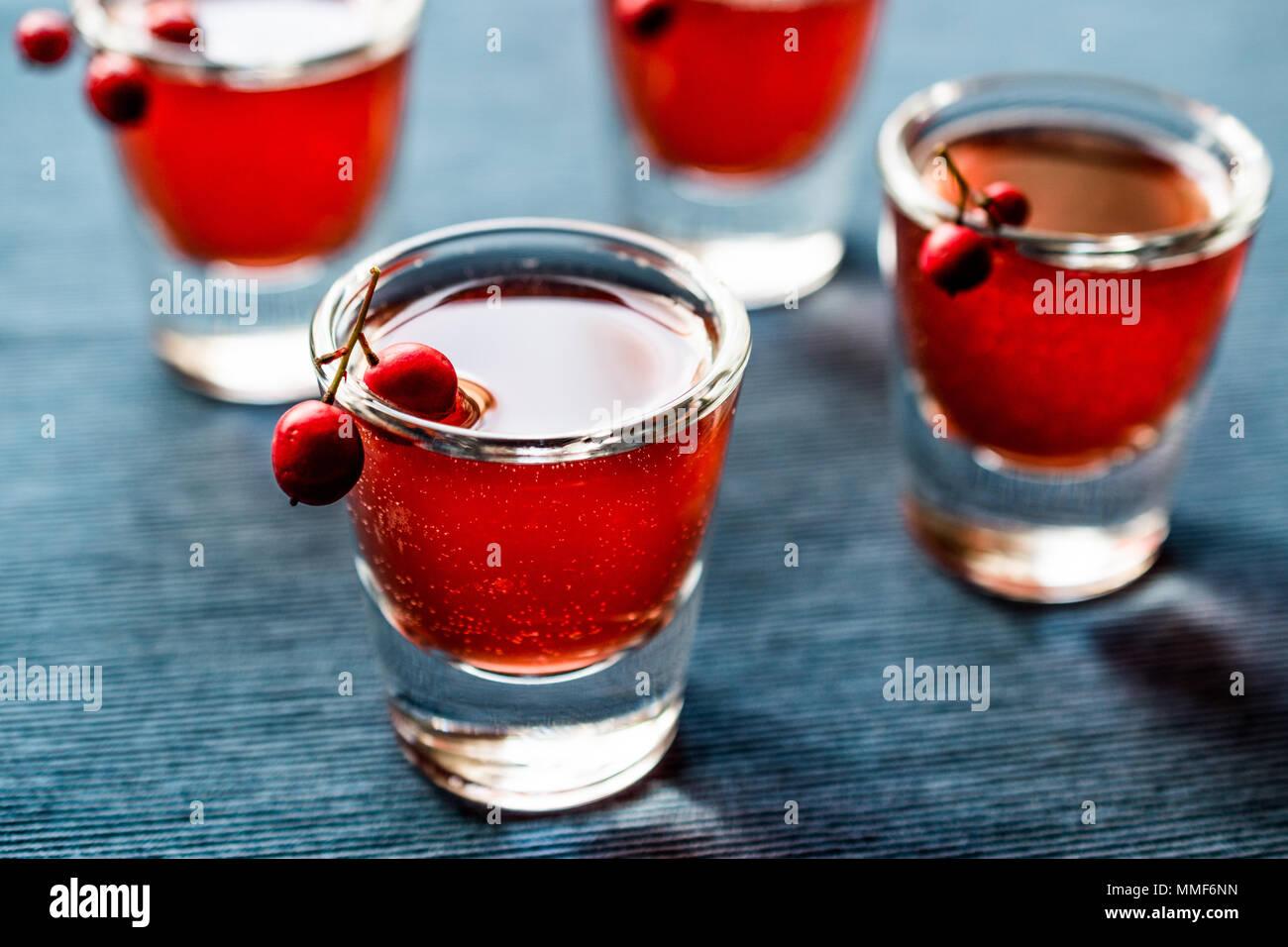 Cranberry Cocktail mit Wodka Shot. Beverage Konzept. Stockbild