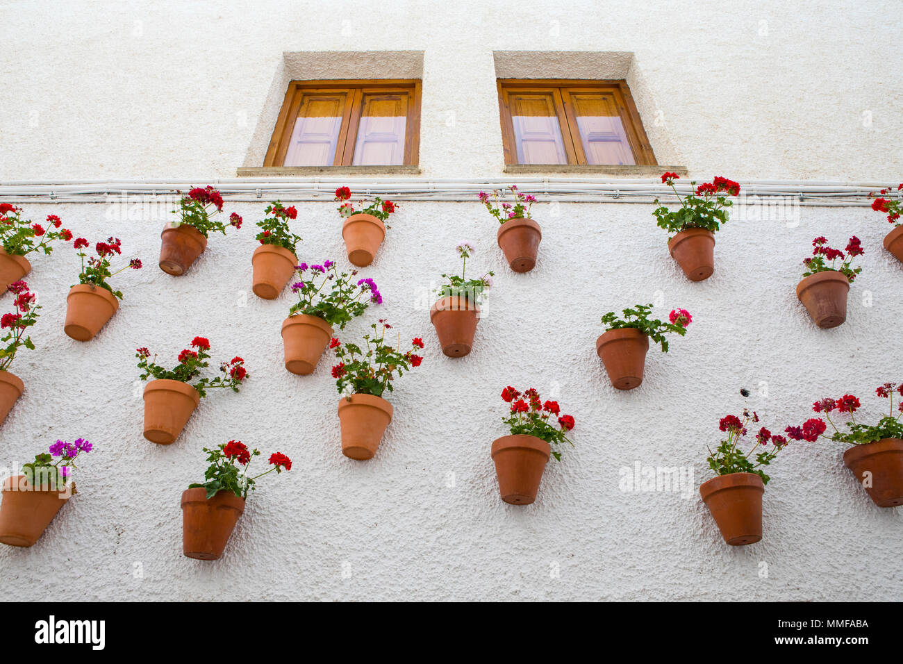 Eine Wand des schönen hängenden Blumentöpfe an einer Wand in ...