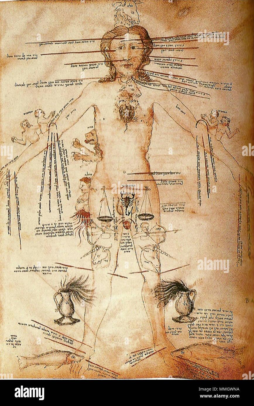 Wunderbar Menschliche Körperteile Diagramm Weibliche Fotos ...
