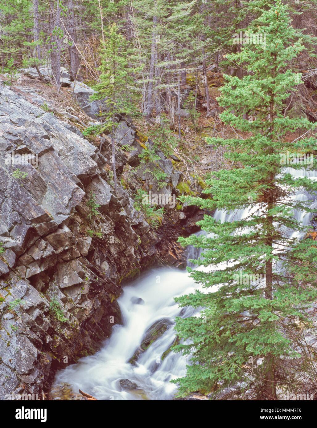 Wasserfall am Lost Creek State Park in der Nähe von Anaconda, Montana Stockbild