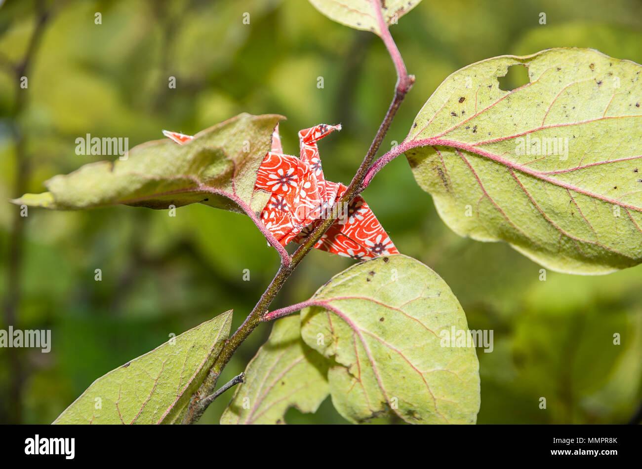 Origami Papier Kran aus original japanischen Origami Papier in einem natürlichen Garten Umgebung eingerichtet. Stockfoto