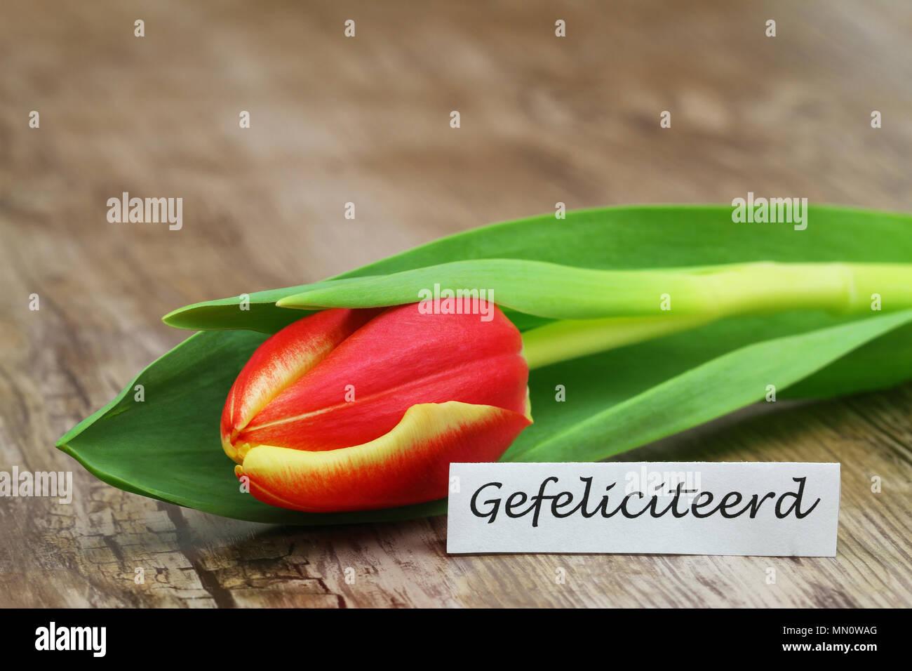 Gluckwunsche geburt niederlandisch