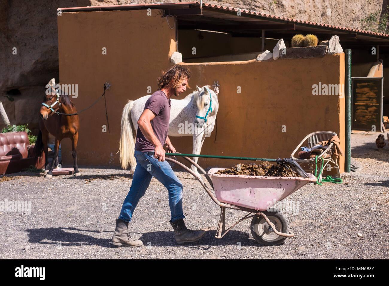 Cowboy Mann die Arbeit auf dem Land Bauernhof mit Pferden Tiere Outdoor Freizeitaktivitäten Aktivität für alternative Lifestyle. Sommer Wetter und natürlichen Hintergrund Stockbild