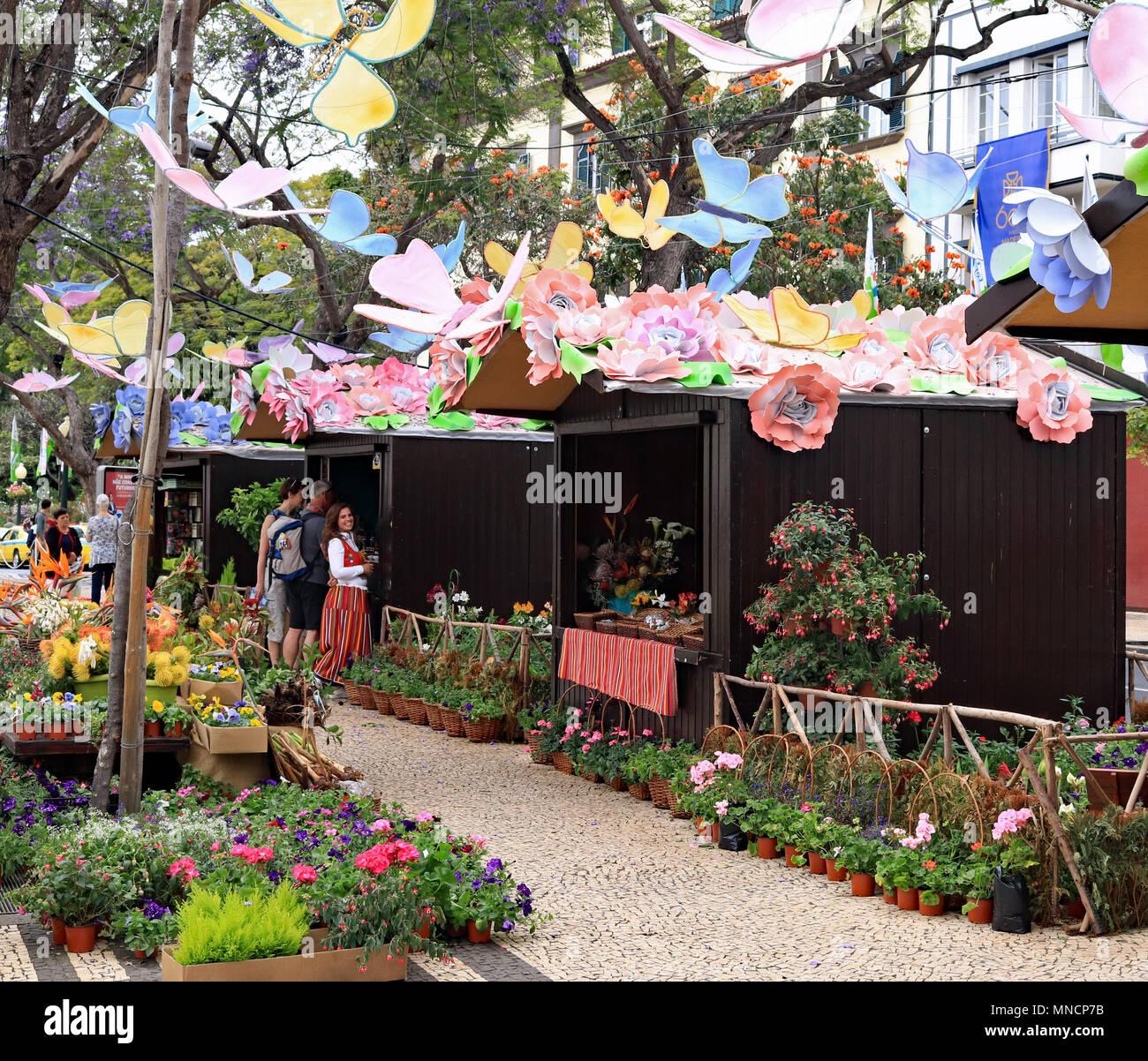 Im frühen Frühjahr eine jährliche Flower Festival in Funchal auf der Insel Madeira mit Pflanzen und Blumen für den Verkauf von Marktständen gehalten wird. Stockbild