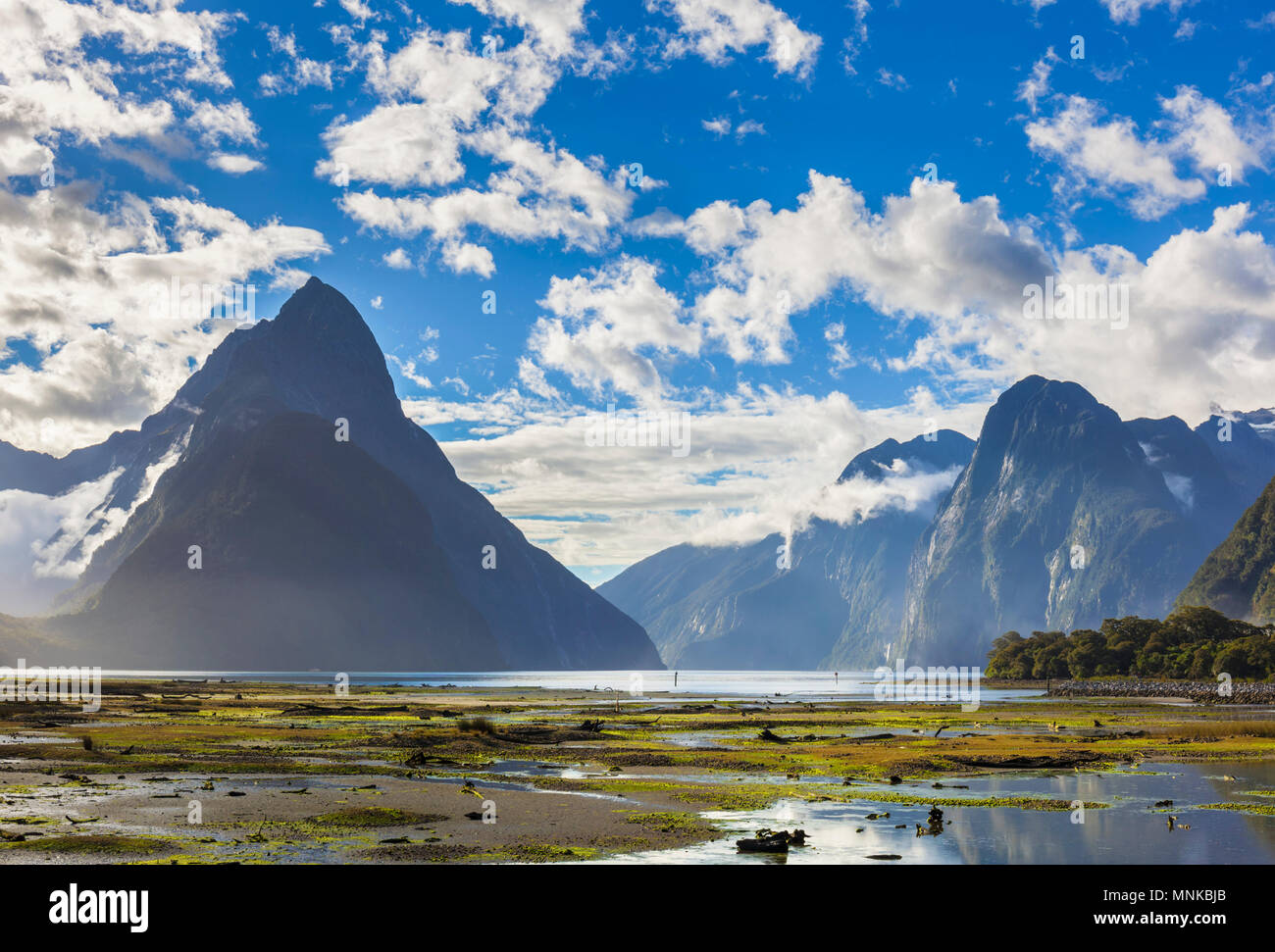 Milford Sound Neuseeland Milford Sound Mitre Peak Fiordland National Park Süden Neuseelands Fjordland National Park South Island nz Stockbild
