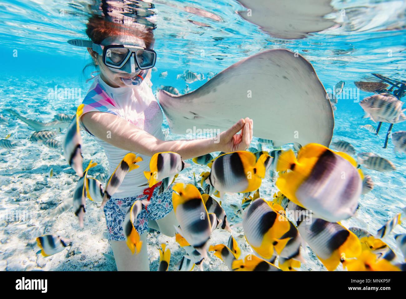 Frau Schnorcheln im klaren tropischen Gewässern unter bunten Fischen Stockbild