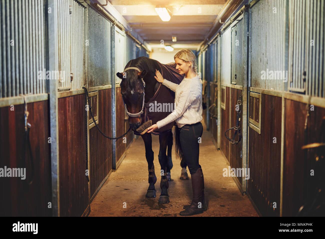 Junge Frau in Reitbekleidung anschickt, ihr Kastanie Pferd für eine Fahrt innerhalb eines stabilen, stehend auf einem Bauernhof Stockbild