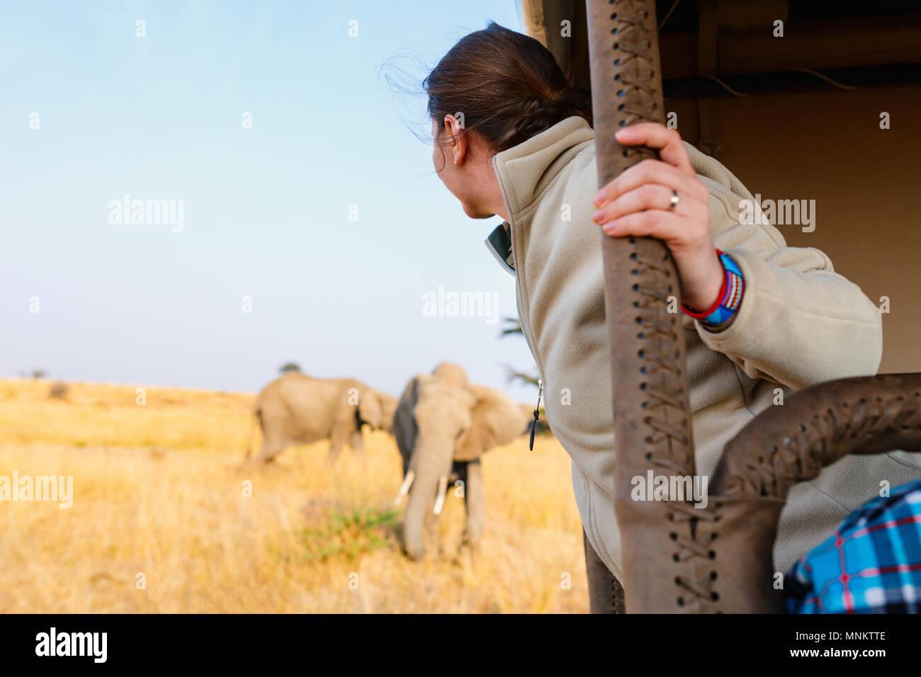 Frau auf Safari Pirschfahrt genießen nahe Begegnung mit Elefanten in Kenia Afrika Stockbild