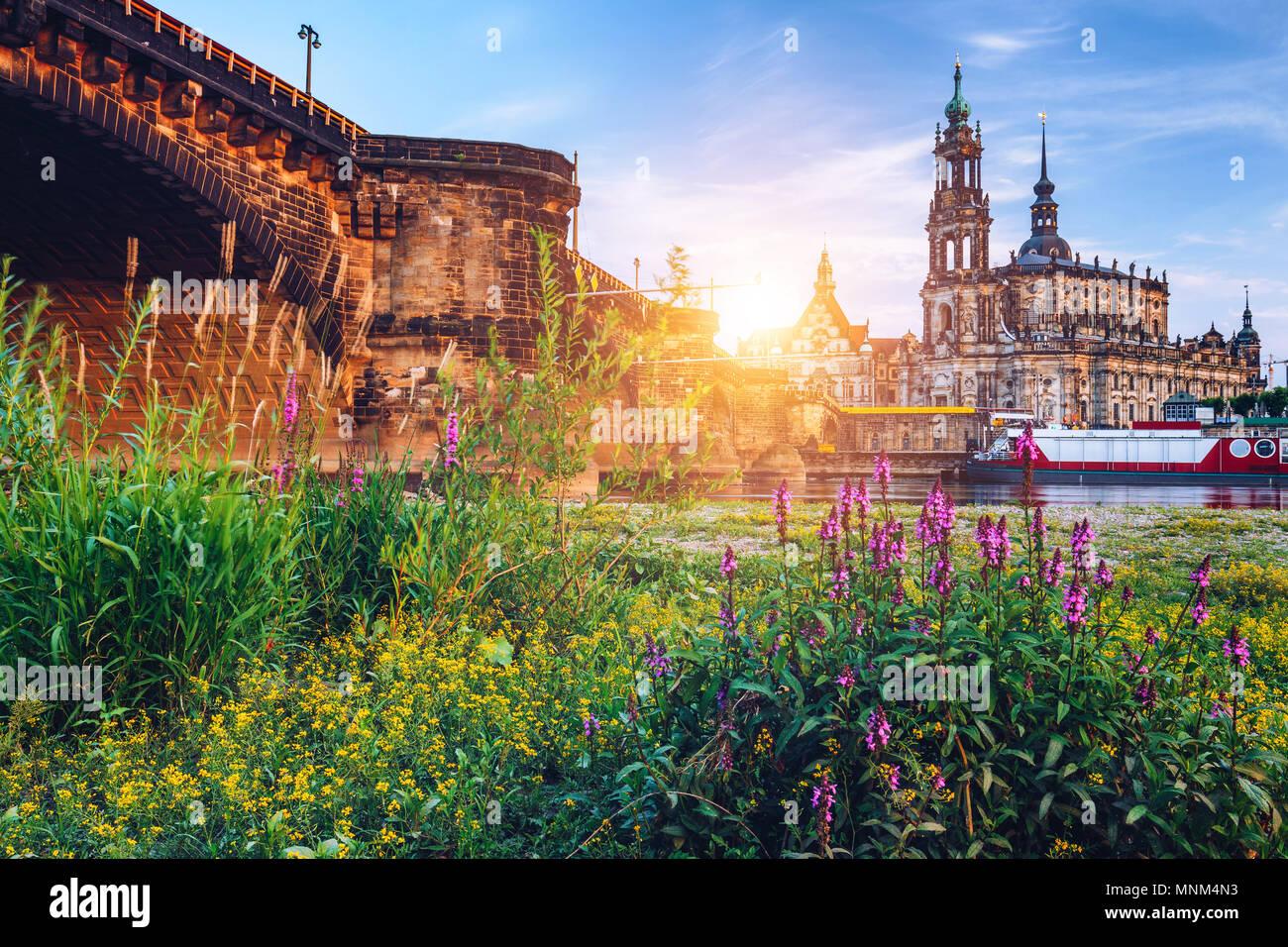 Augustusbrücke (Augustusbrucke) und die Kathedrale der Heiligen Dreifaltigkeit (Hofkirche) über die Elbe in Dresden, Deutschland, Sachsen. Stockbild