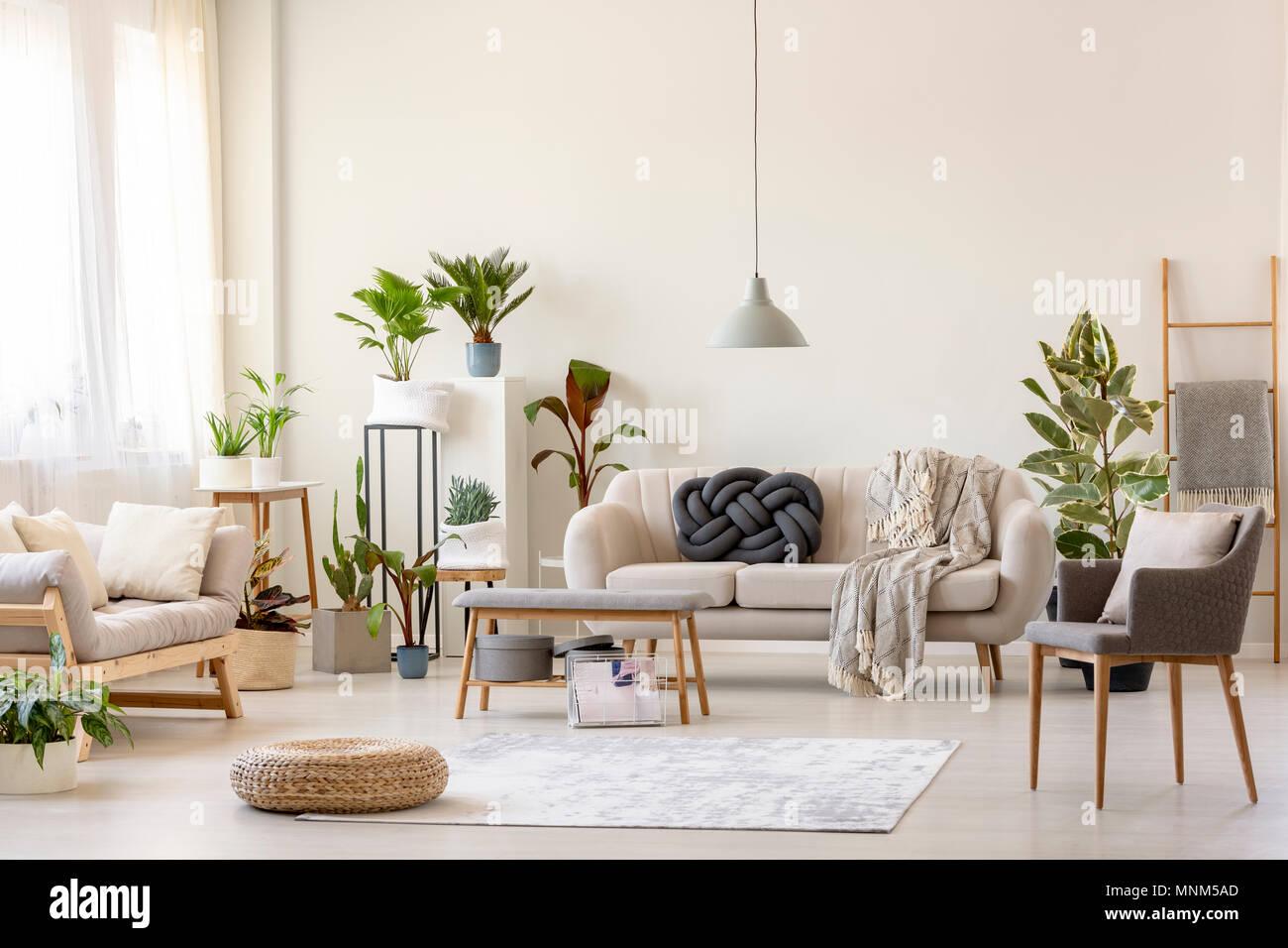 Pouf Auf Teppich Und Pflanzen Im Geraumigen Wohnzimmer Einrichtung