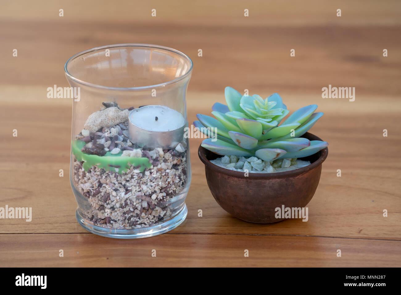 Topfpflanze Und Eine Kerze Auf Einem Tisch In Einem Restaurant In Der  Galapagos Inseln, Ecuador.