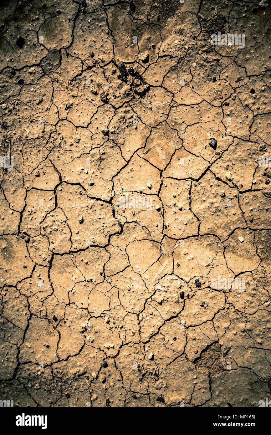 Trockene ausgedörrte Erde Textur aus Wüste Boden Stockfoto