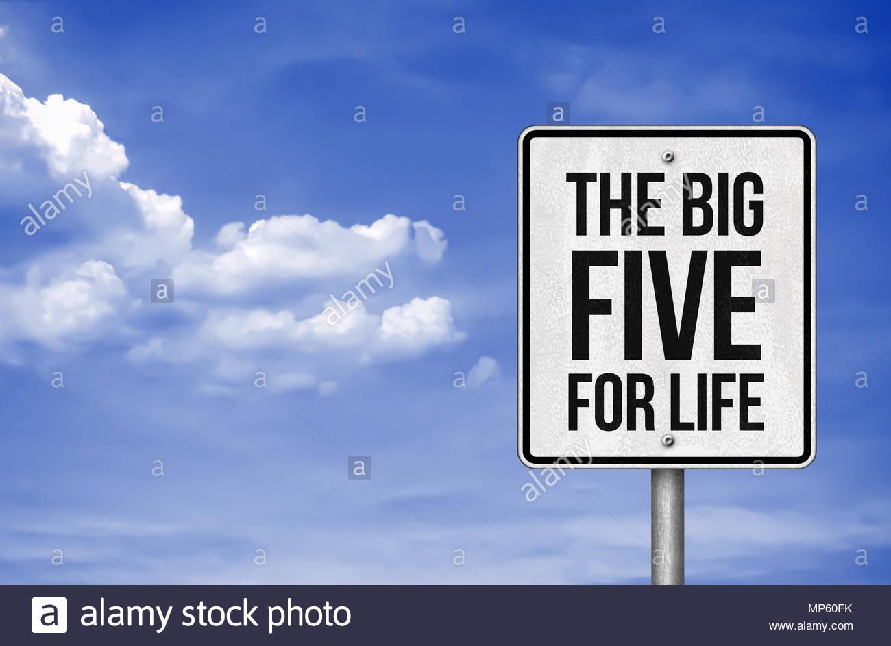 Die großen fünf für das Leben Stockbild