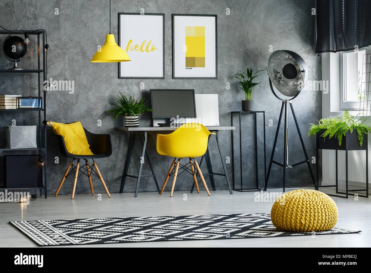 Graue Zimmer Mit Gemusterten Teppich Pflanzen Moderne Mobel
