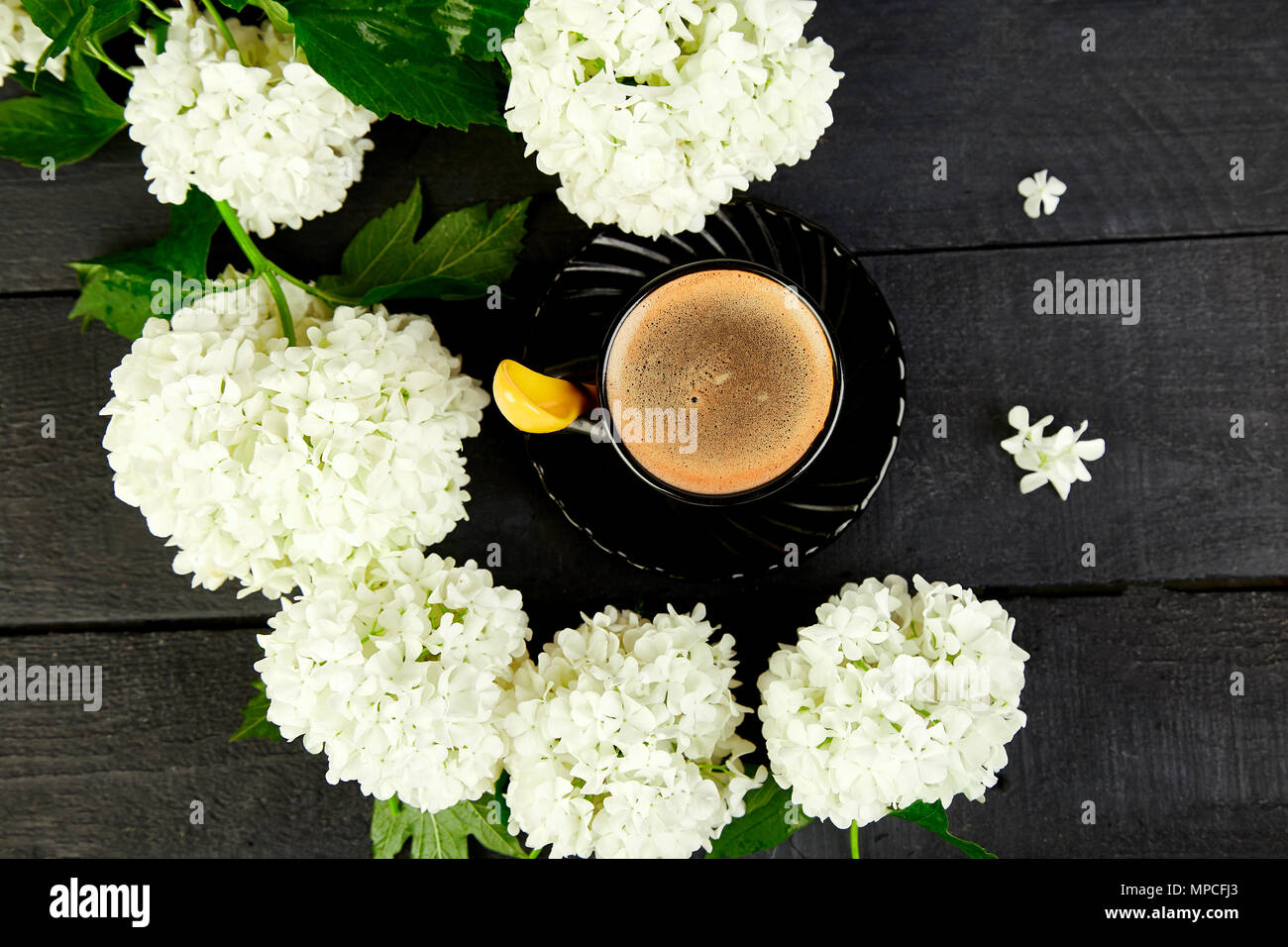 Tasse Kaffee Mit Blumenstrauß Blume Hydrangea Auf Schwarz
