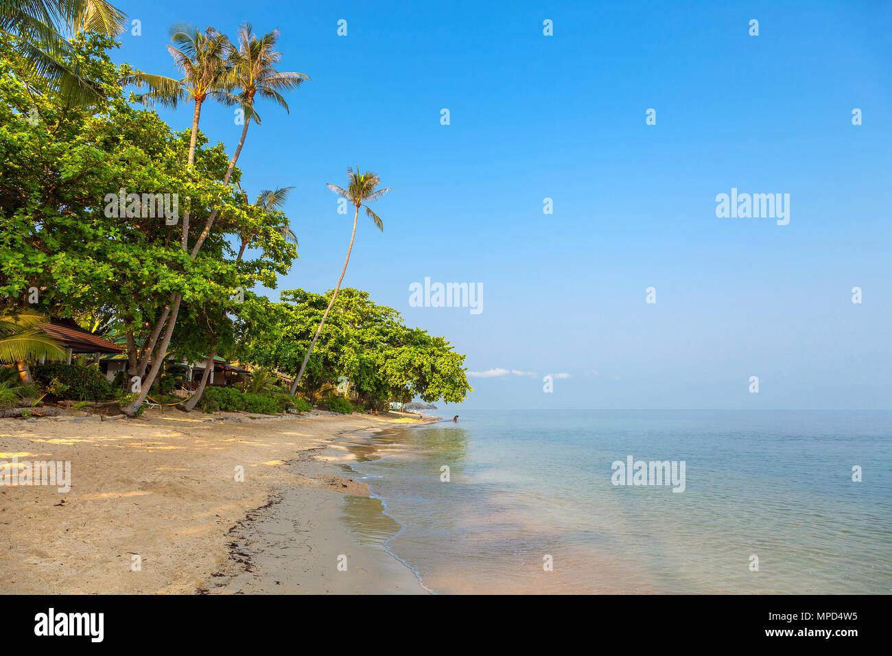 Sonniger Morgen auf den Strand von Bang Po. Samui Island. Thailand. Stockbild