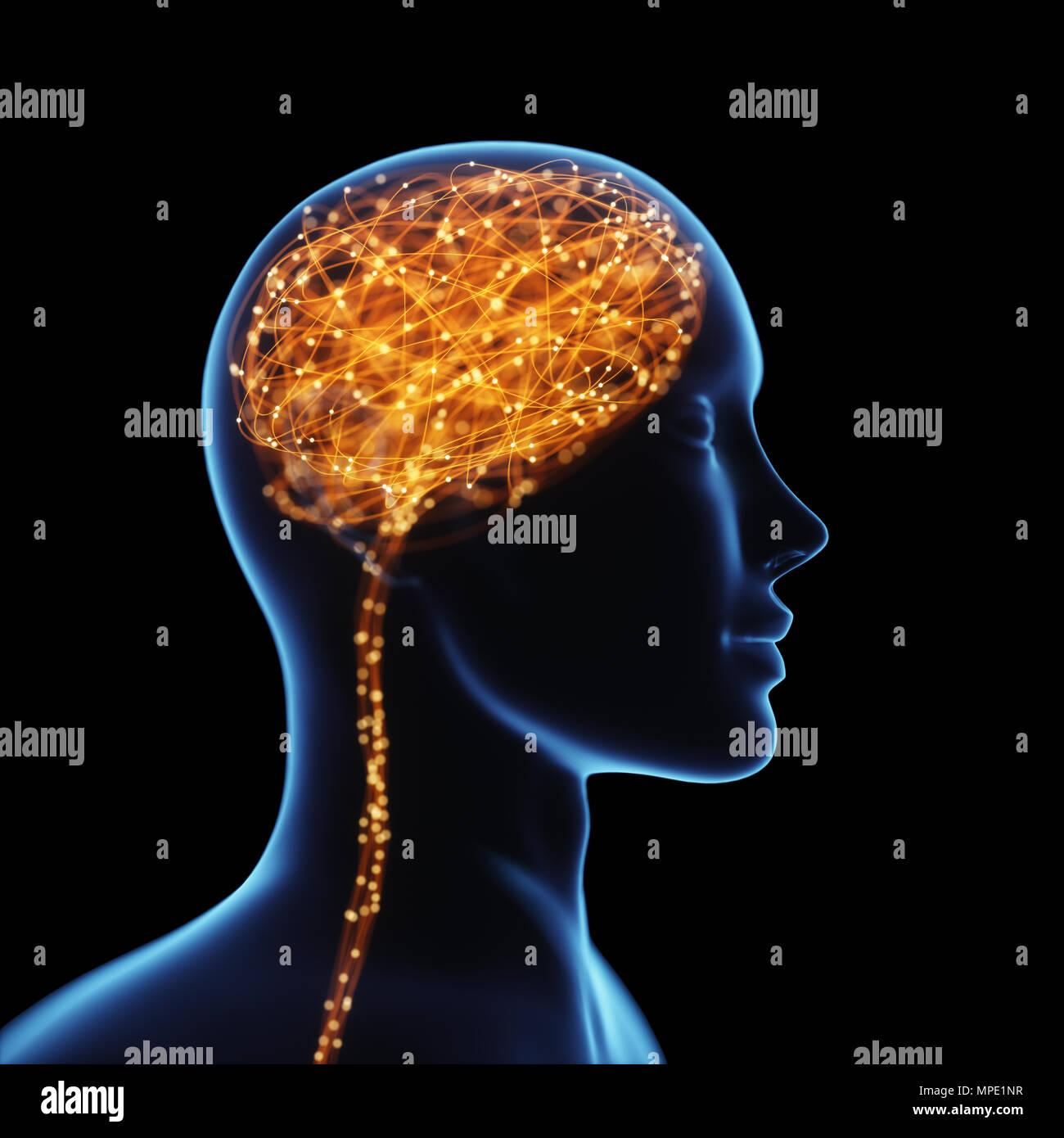 3D-Darstellung. X-ray des Kopfes und des menschlichen Gehirns im Konzept der neuronalen Verbindungen und elektrische Impulse. Funkelt im Inneren des Gehirns. Leistungsstarke verstand. Stockbild