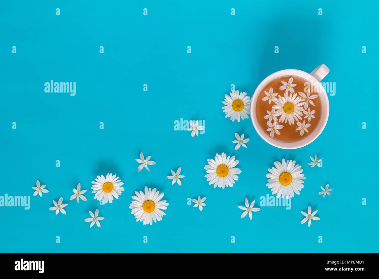 Tasse Tee mit frischen Blumen blühen Blumen auf blau Oberfläche. Flach, Ansicht von oben Essen floral background. Stockbild