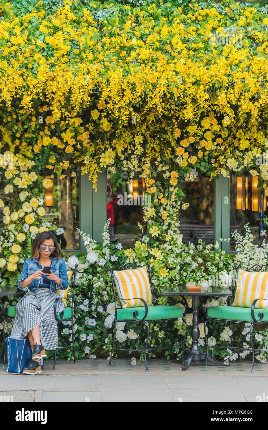 london, großbritannien. 23. mai 2018. die ivy chelsea garden zweig