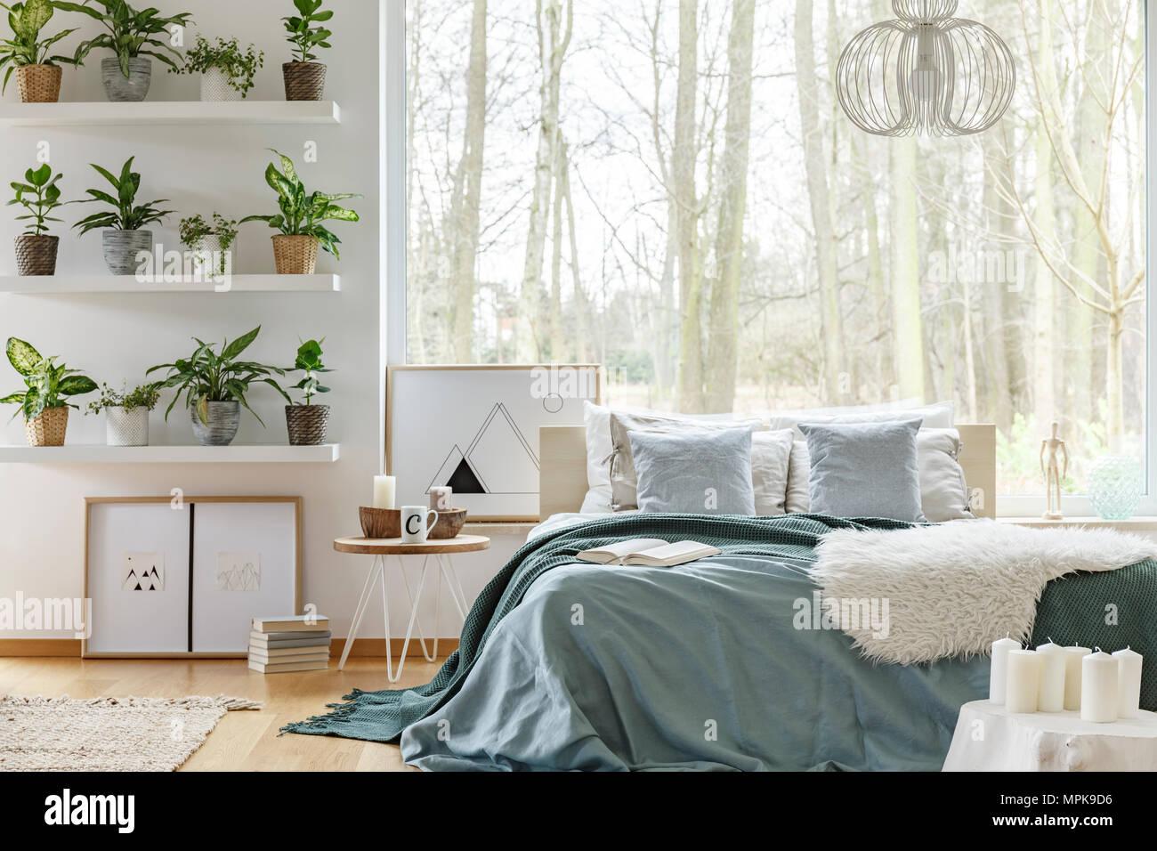 King-size-Bett und Pflanzen auf Regalen in gemütlichen Schlafzimmer ...