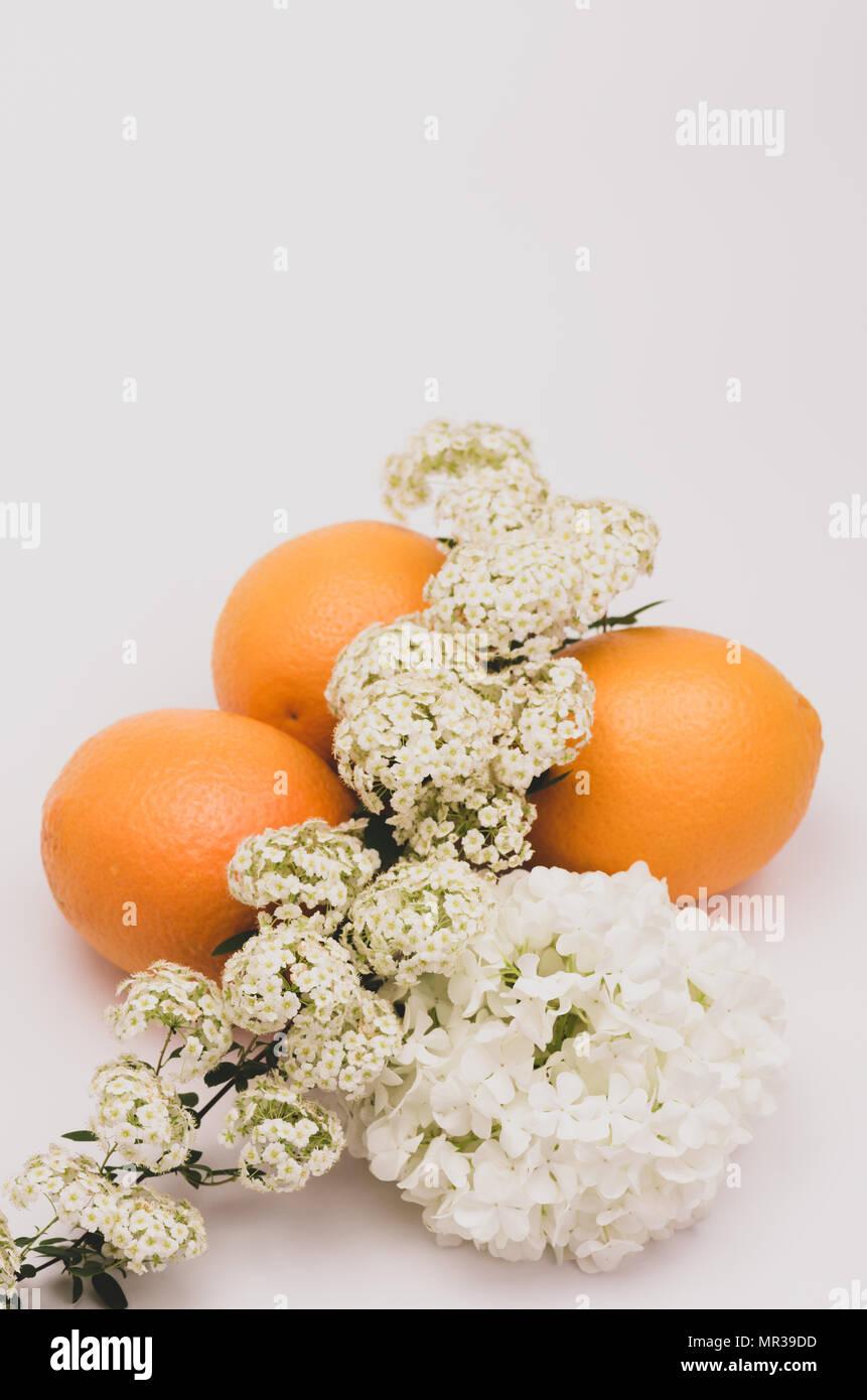 Frische organische orangen und weißen Blumen Stockbild