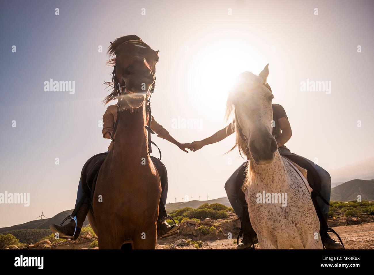 Mit den Händen berühren, mit Liebe aber Pferd Gesicht Bombe die Bilder für eine endgültige lustig Bild mit Pferd lächelnd. Hintergrundbeleuchtung und liebe Konzept in der Natur Freizeit Stockbild