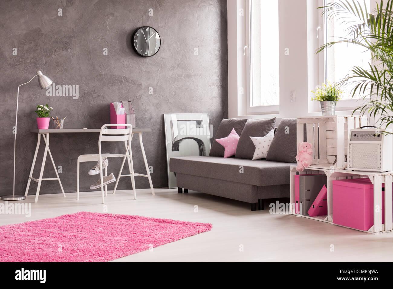 Geräumiges Zimmer In Grau, Rosa Und Weiß Mit Schreibtisch, Büro, Lampe,  Sofa Und Bücherregal