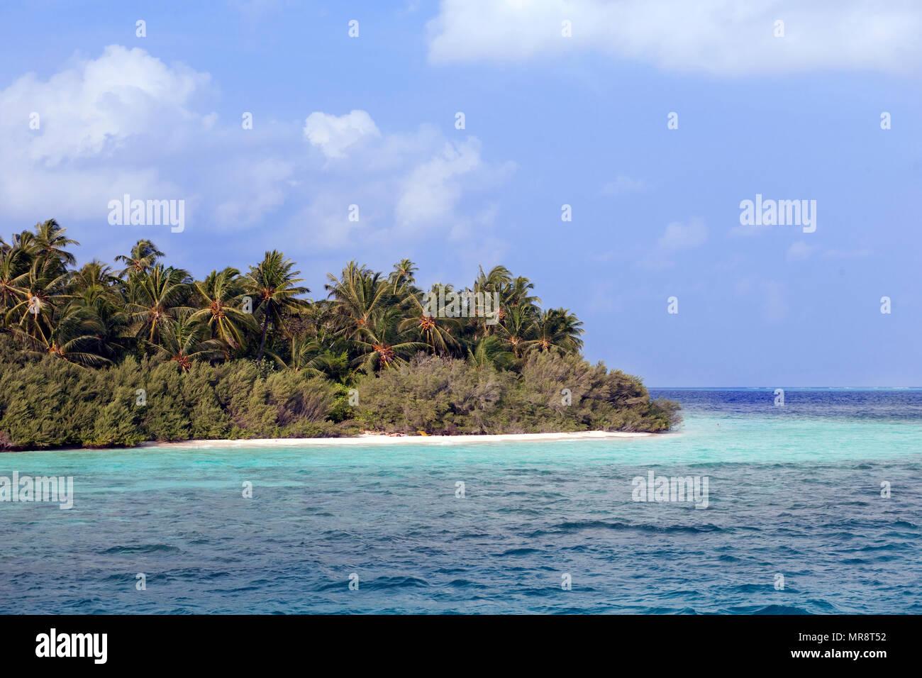 Malediven, Insel | Malediven, Insel Stockbild