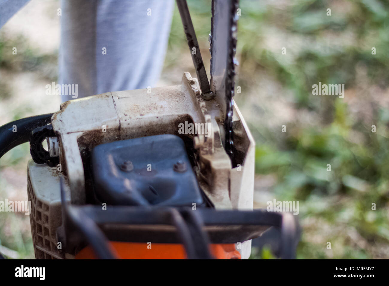 logger chainsaw cutting trees stockfotos & logger chainsaw cutting