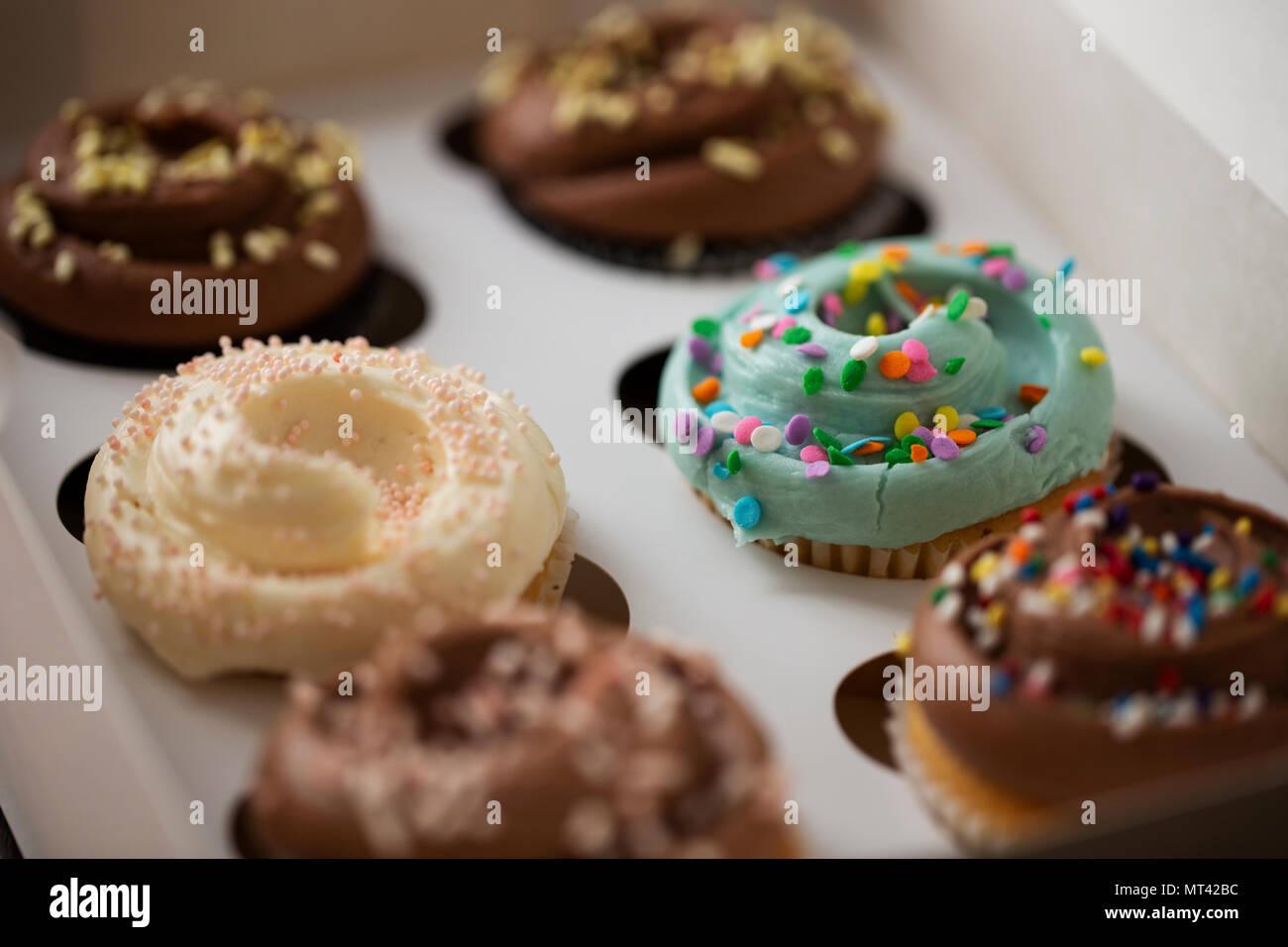 Dekorierte Schokolade und Vanille Cupcakes mit besprüht, in einem Feld von sechs von einer Bäckerei. Stockbild
