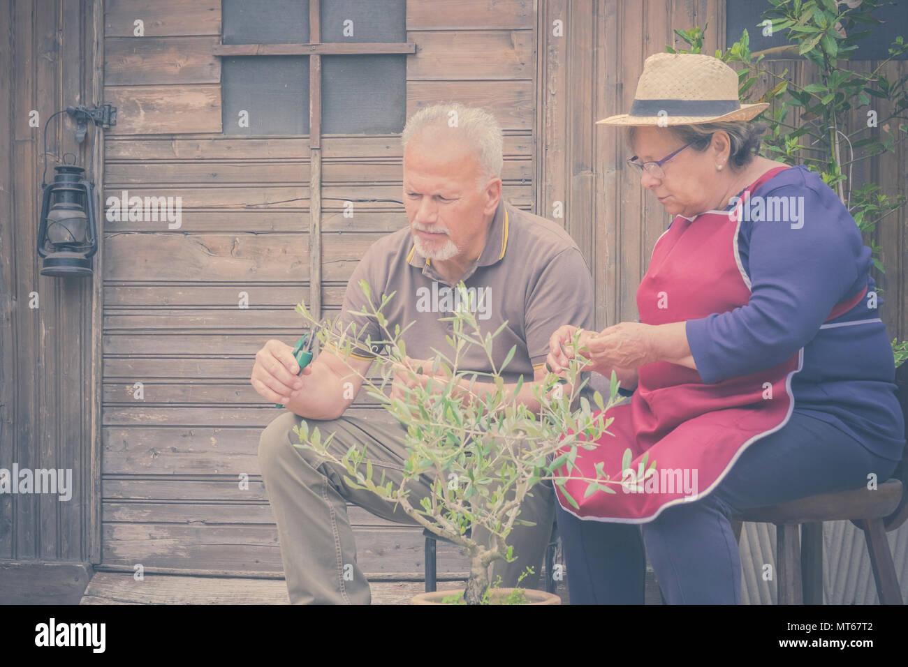 Ältere ältere Paare in der Landschaft wie Home Farm arbeiten zusammen, mit Pflanzen, Schneiden und setzen sie instand. Familie Konzept des Lebens für immer zusammen mit l Stockbild