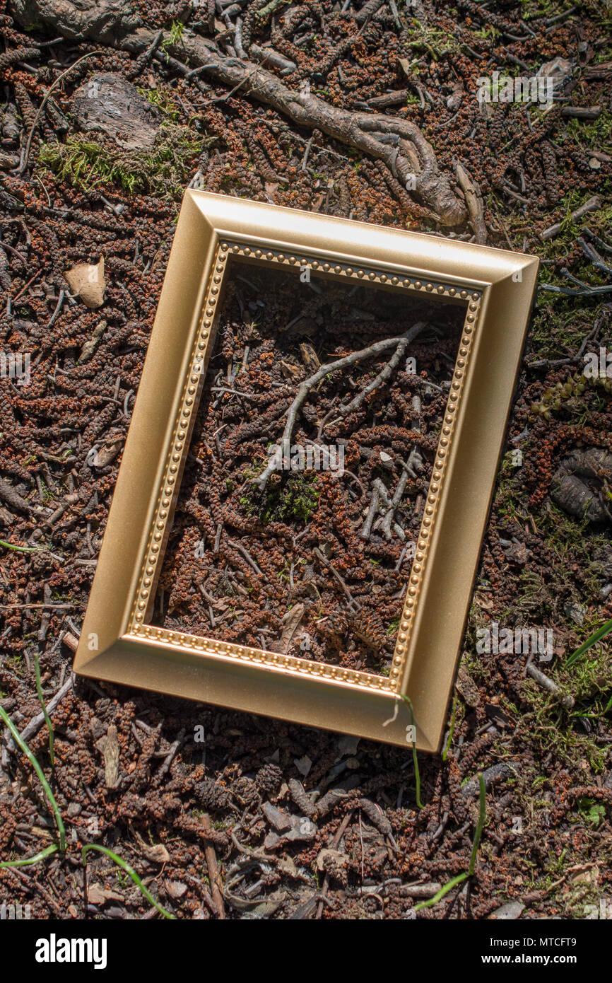 Wunderbar Unbehandeltes Holz Bilderrahmen Großhandel Fotos ...