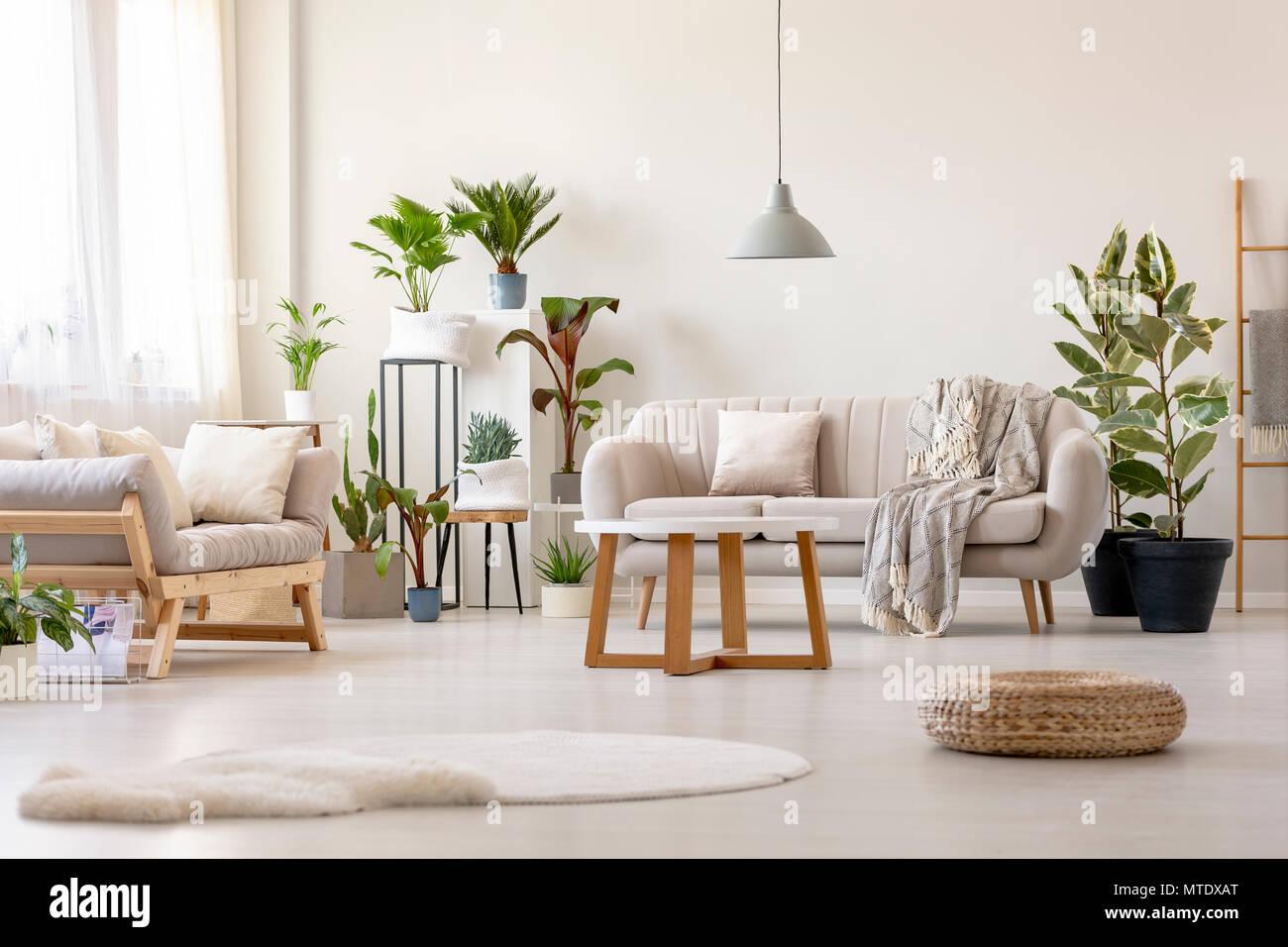 Pouf Nachste Im Hellen Wohnzimmer Einrichtung Mit Pflanzen Und Beige Couch Zu Teppich Real Photo Stockfotografie Alamy