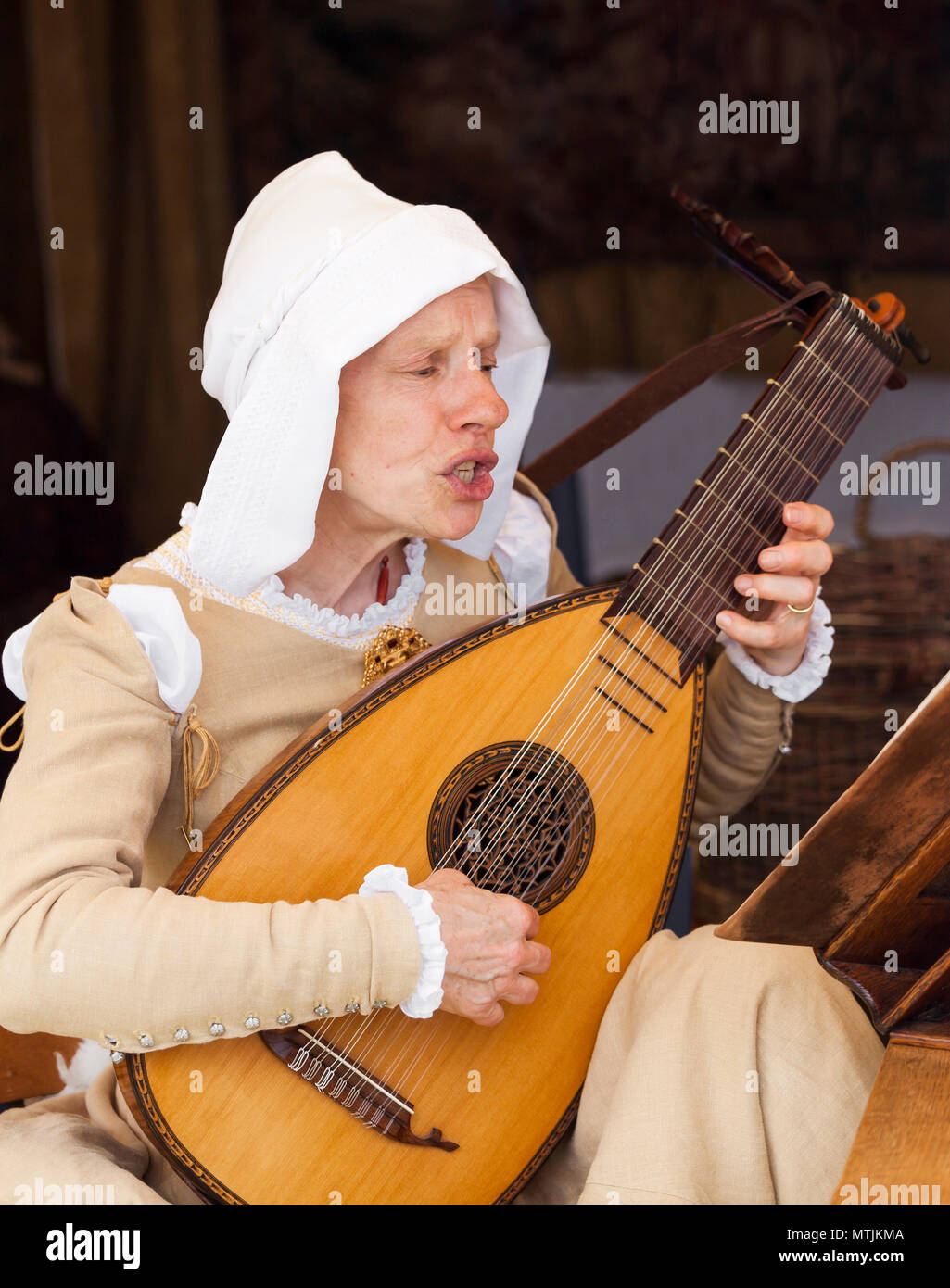 Frau spielen der Laute. Stockbild