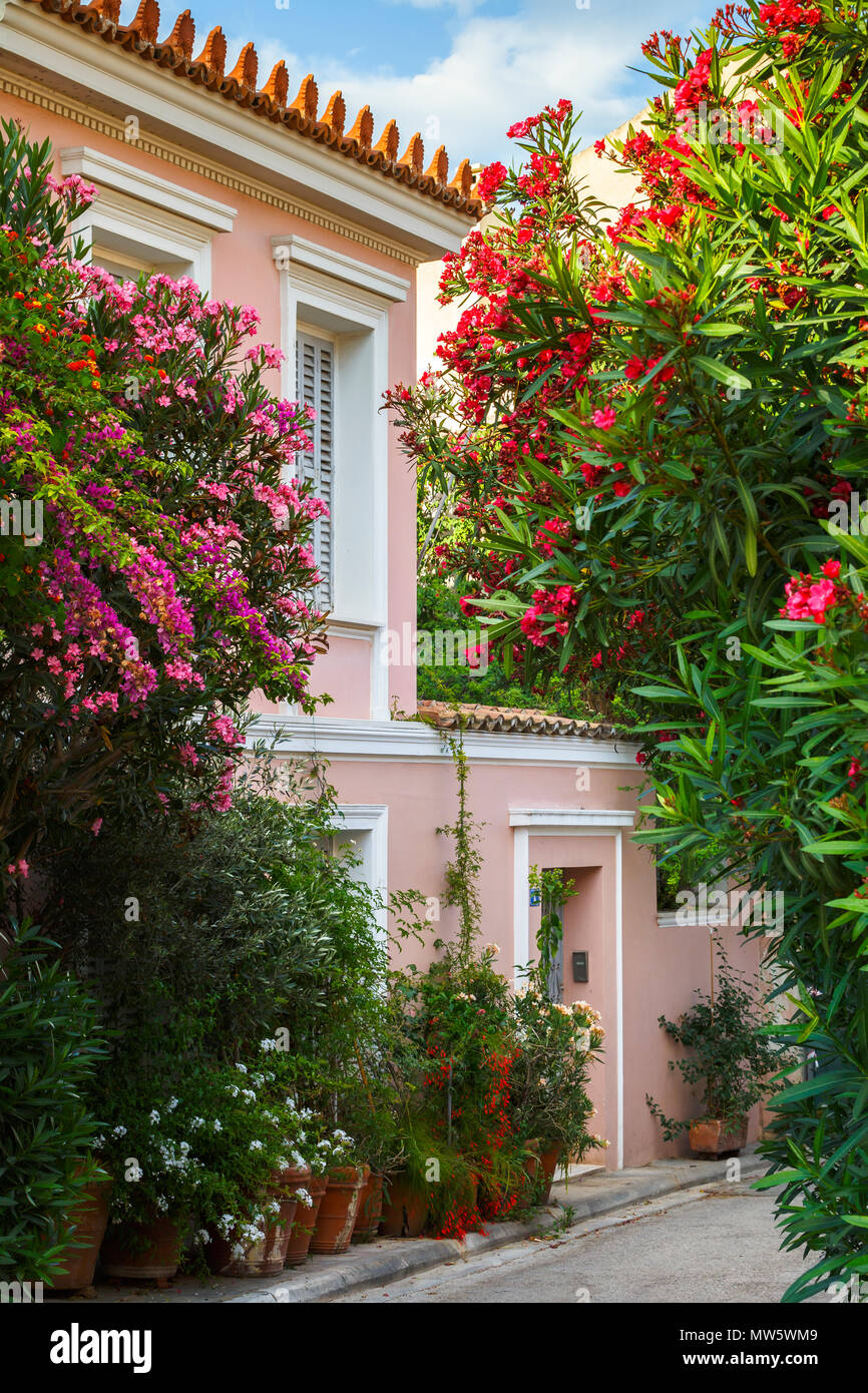 Straße mit vielen Blumen im Plaka Viertel von Athen, Griechenland. Stockbild