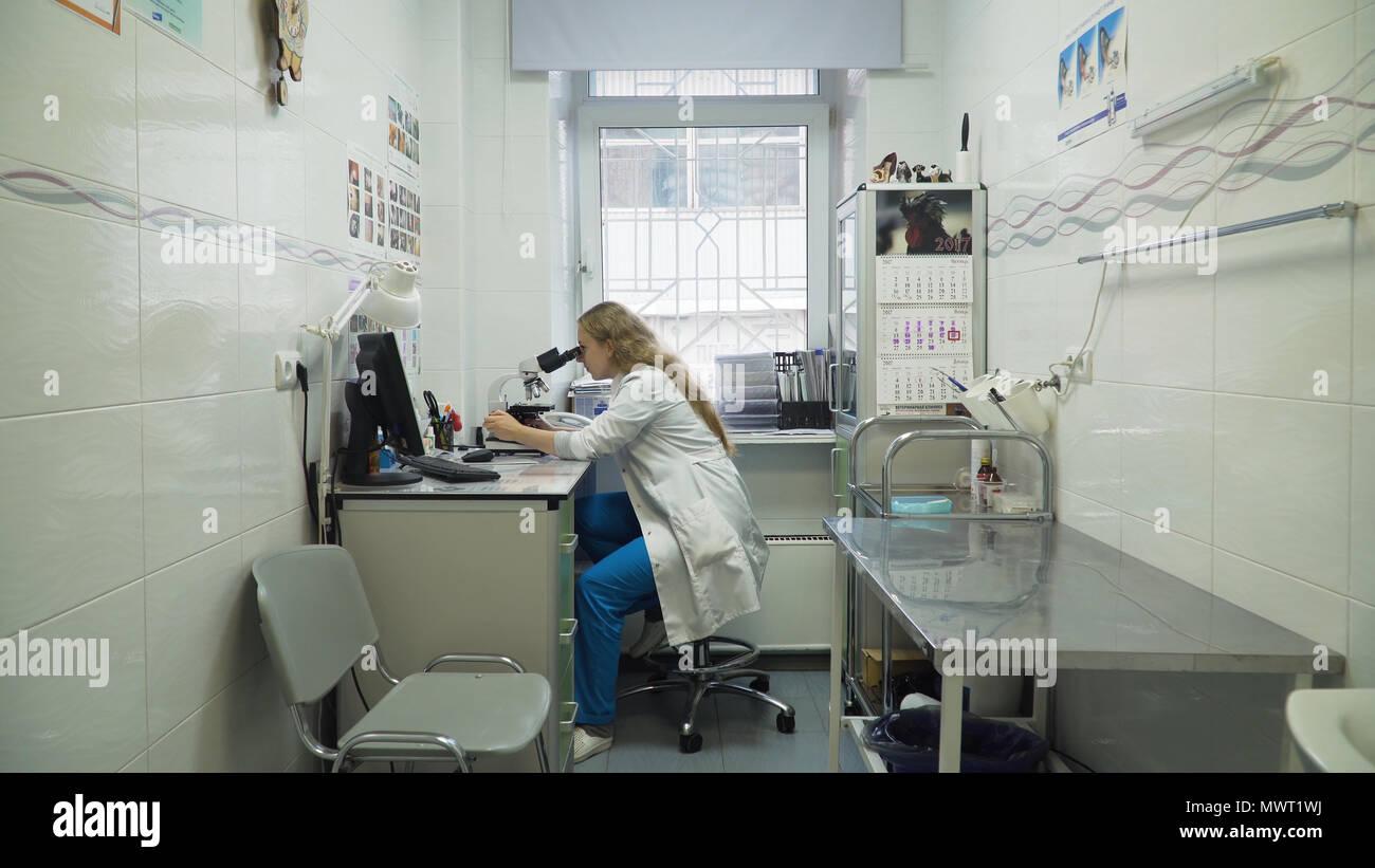 Arzt Frau Arbeiten mit dem Mikroskop im Labor. Wissenschaftlerin durch ein Mikroskop im Labor. Wissenschaftler mit einem Mikroskop im Labor. Stockbild