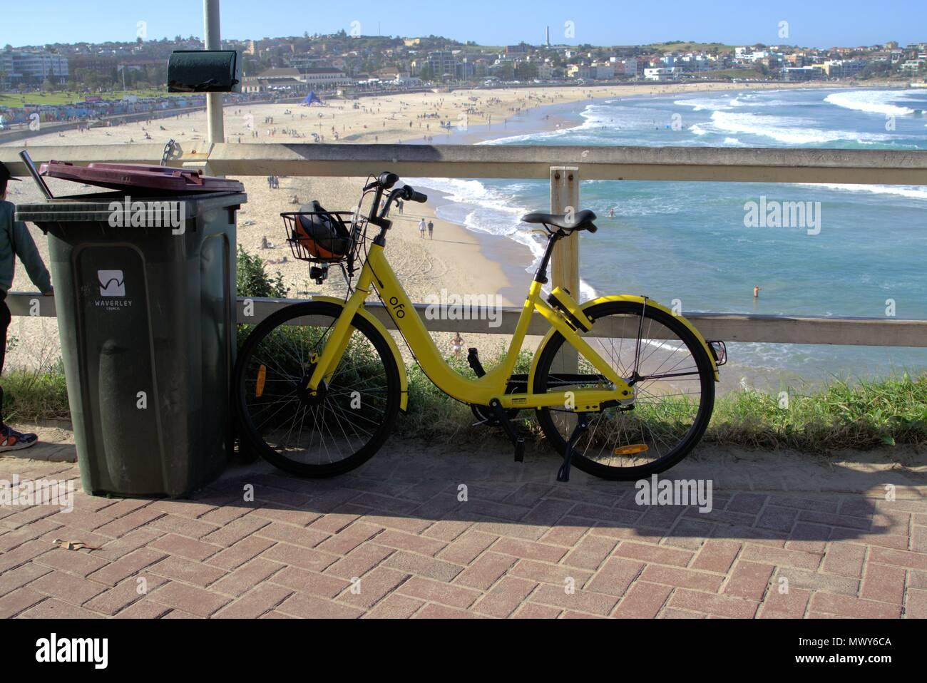 Ofo bike am Bondi Beach in Sydney Australien geparkt. Mitfahrzentrale Leihfahrrad gegen Mülltonne in Sydney geparkt. Nur zur Illustration Editorial. Stockbild