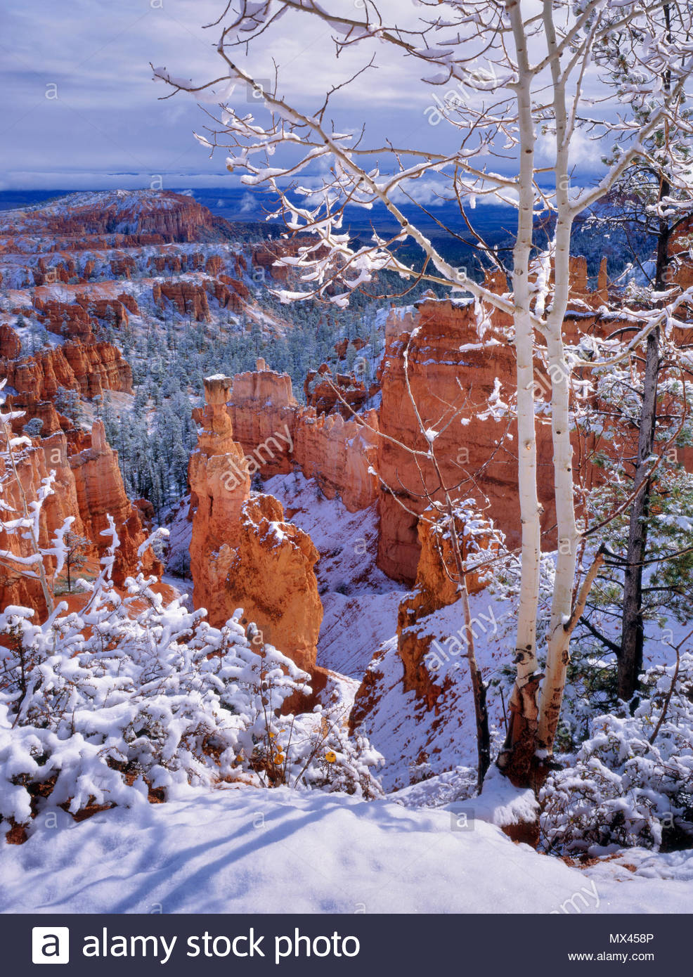 Clearing Sturm am Sunset Point, Bryce Canyon National Park, Utah Stockbild