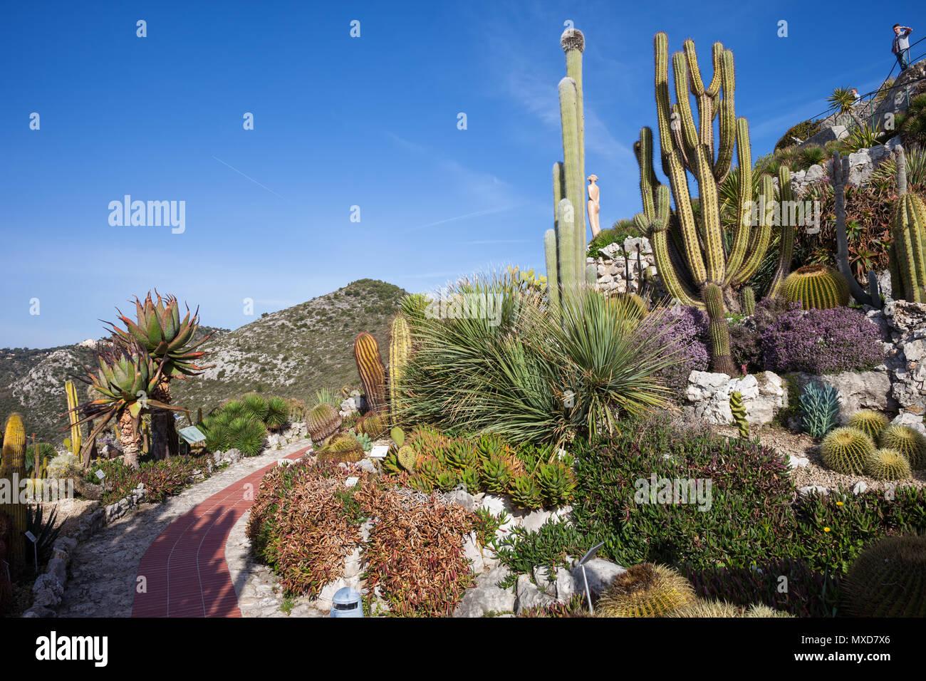 Botanischer Garten - Jardin Exotique in Eze, Frankreich, Côte d\'Azur ...