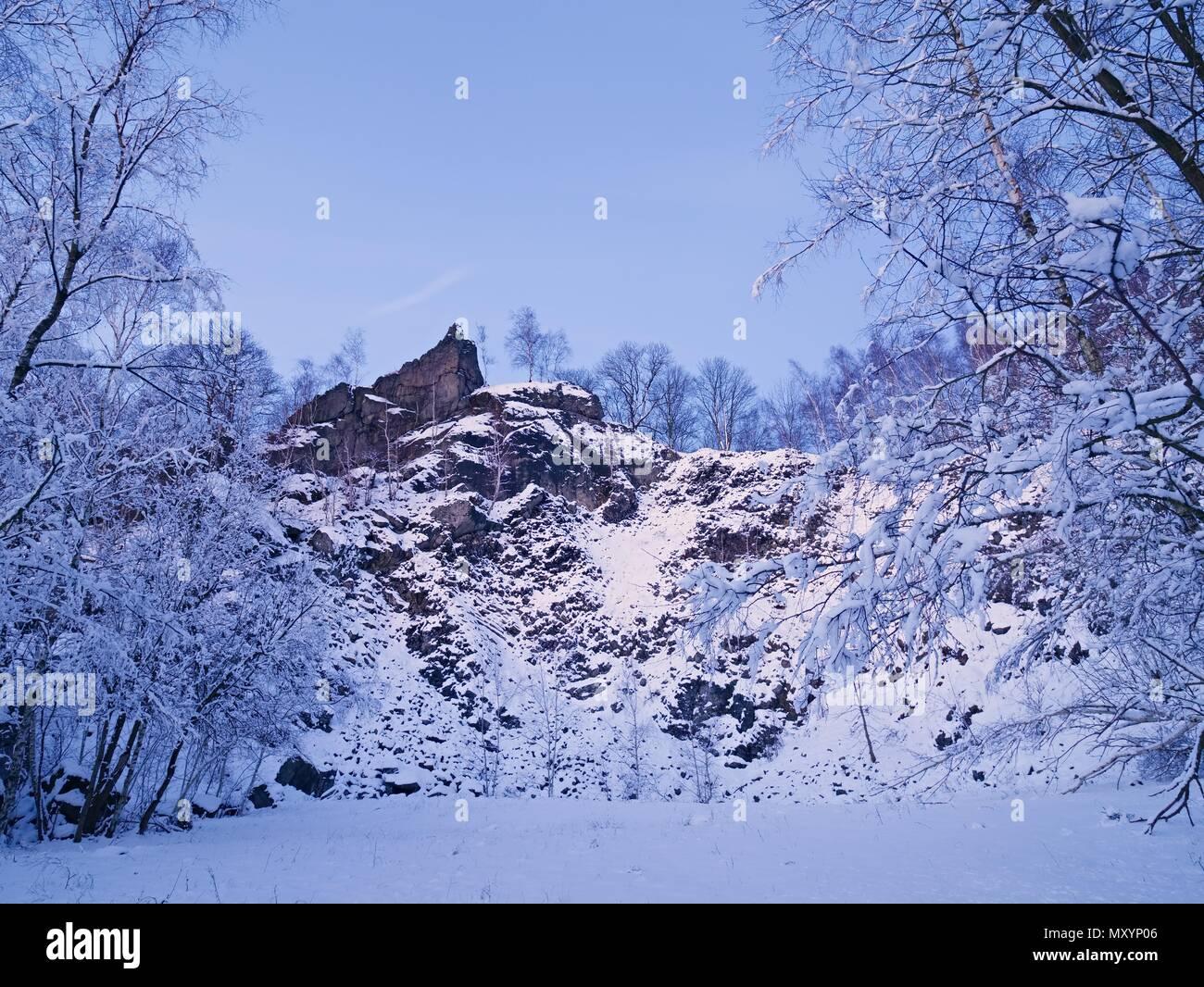 Winterlandschaft. Winter frostige Tree Tops gegen den dunklen Himmel im Wald. Verschneite Baumkronen unter Schnee Stockbild