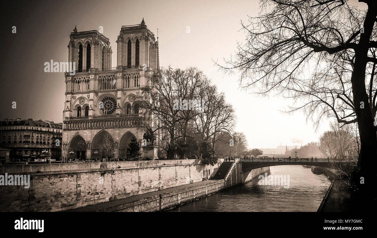 Notre Dame von Paris und Seine, Ile de France, Paris, Frankreich Stockbild